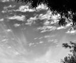 sky shot