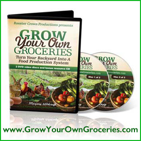 Grow Your Own Groceries