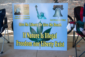 If-nature-is-illegal