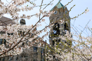 Lackawanna County Courthouse bell tower